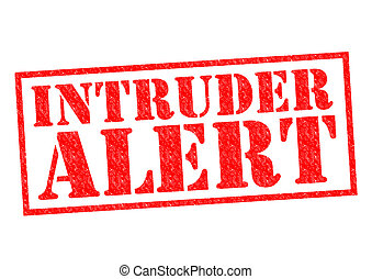 INTRUDER ALERT red Rubber Stamp over a white background.