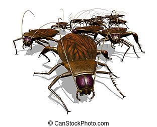 invázió, bug's, -, csótány, kilátás