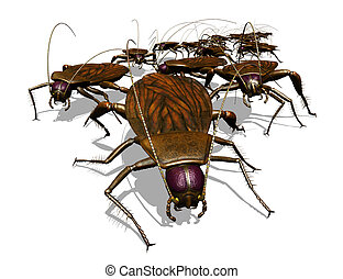 invasie, bug's, -, kakkerlak, aanzicht