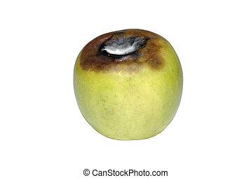 invecchiamento, mela verde, con, fungo, isolato, bianco, fondo.