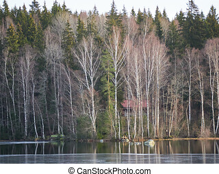 inverno, aulankojarvi, lago, cena, snowless