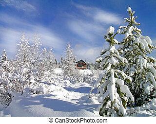 inverno, cabana