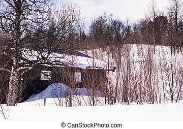 inverno, cabina