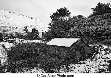 inverno, capanna, wodland, nero, bianco, paesaggio, abbandonato