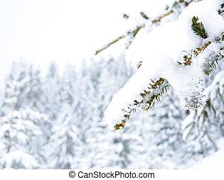 inverno, concetto
