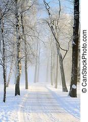 inverno, day.