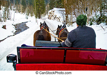 inverno, dois, romance, holiday., sleigh, horses., puxado