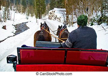 inverno, dois, romance, holiday., sleigh, horses., puxado
