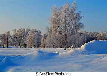 inverno, em, a, steppe