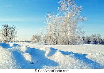 inverno, em, altai