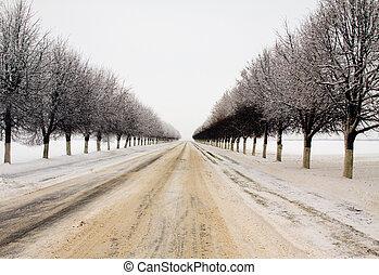 inverno, estrada