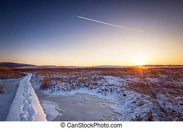 inverno, foresta, su, il, fiume, a, sunset.