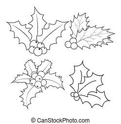 inverno, isolado, folhas, silueta, ilustração, símbolo, experiência., vetorial, baga, frutas, ícone, holly, christmas branco, design.