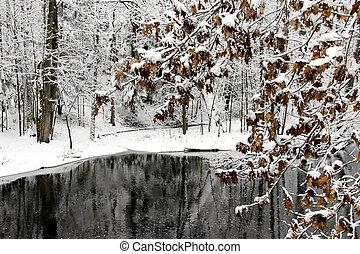 inverno, lago, e, árvores, coberto, com, neve