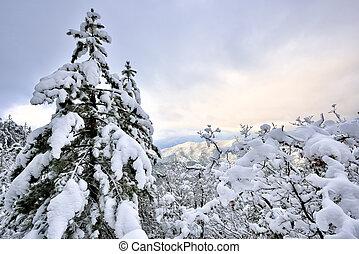inverno, ligado, a, montanha