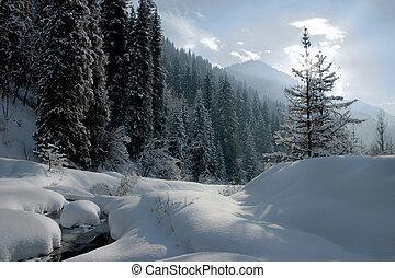 inverno, ligado, lado montanha