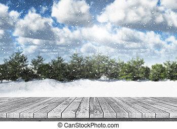 inverno madeira, olhar, tabela, saída, paisagem, 3d