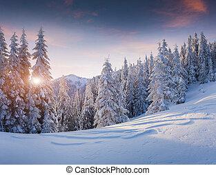 inverno, montagne., alba, bello