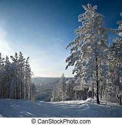 inverno, montanha, paisagem., neva-coberto, asseado, azul, ensolarado, skies.