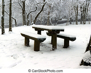 inverno, neve