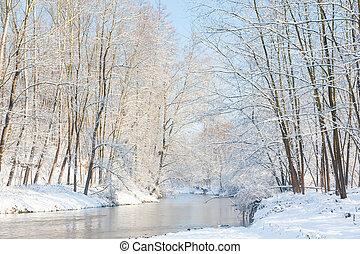 inverno, nevoso, woods., landscape:, piccolo, fiume