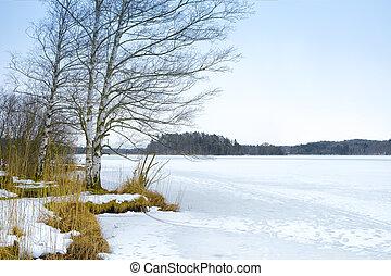 inverno, paisagem, osterseen