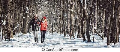 inverno, par, passeio, frio, madeiras, gelado, tendo, dia