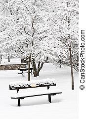 inverno, parco