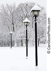 inverno, parque