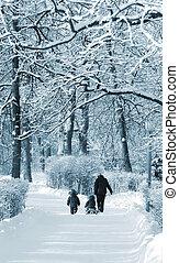 inverno, passeggiata