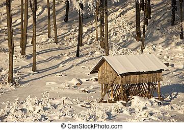 inverno, pasturage