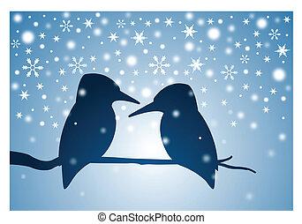 inverno, ramo, uccelli