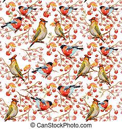 inverno, seamless, struttura, con, carino, uccelli,...