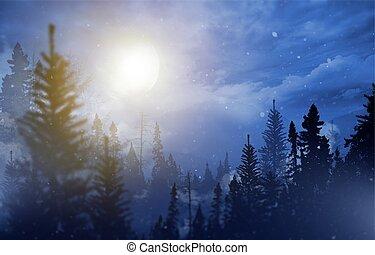 inverno, selva