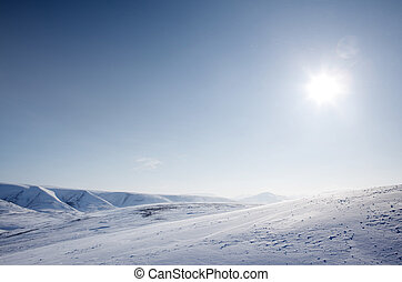 inverno, selva, neve