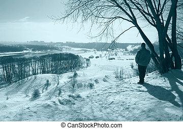 inverno, soleggiato, chiaro, parco, passeggiata, sci, giorno