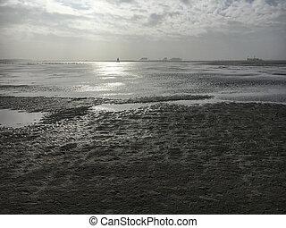 inverno, st., nublado, peter-ording, praia, dia