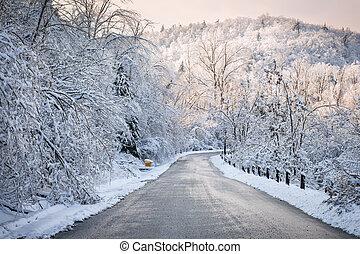 inverno, strada, in, nevoso, foresta