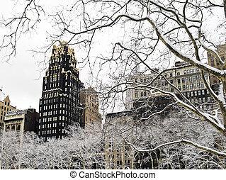 inverno, sycamore, parque bryant