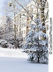 inverno, típico, bloco, apartamentos, polaco, neve, town.