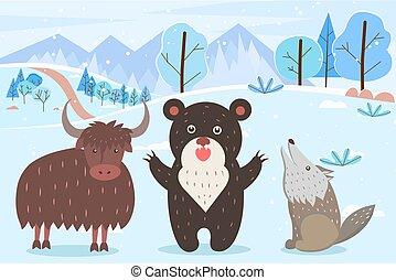 inverno, urso, touro, uive, lobo, floresta