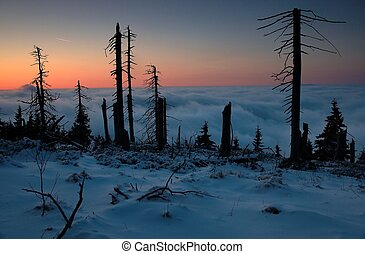 Inverse - Beautiful winter early evening on the mountain in...