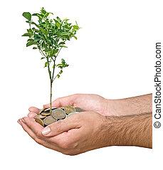 inversión, a, agricultura