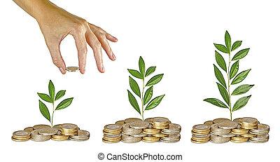 inversión, a, negocio verde