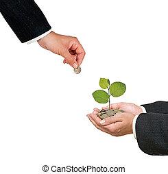inversión, negocio verde