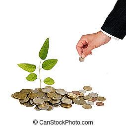 inversión verde, empresa / negocio
