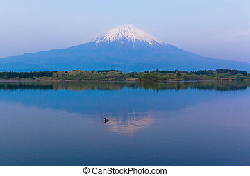 Inverted Mt Fuji reflected on Lake
