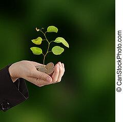 investeren, groene handel