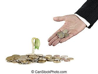 investeren, om te, landbouw