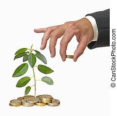 investering, grön affärsverksamhet